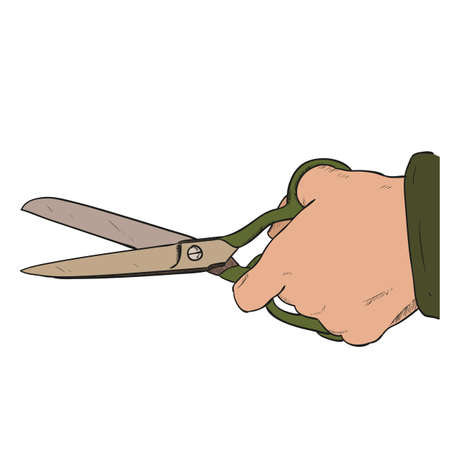 seamstress: Vector color sketch of kitchen scissors. Hand draw illustration. Illustration