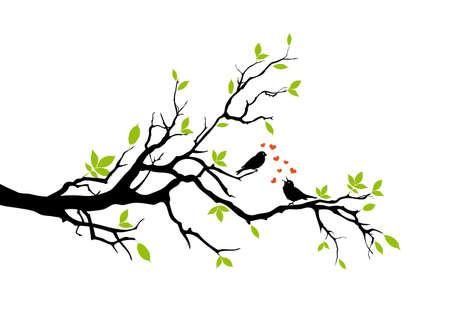 primavera, dos pájaros en el amor, el vector
