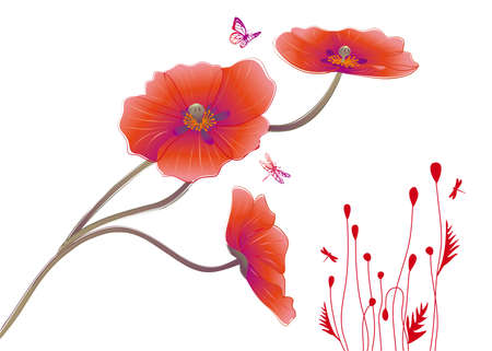 opium: Poppy flowers with butterflies, vector  Illustration
