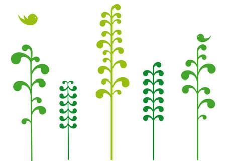 Green trees with birds, vector  Stock Vector - 5198335