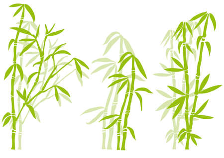 Bamboo tree silhouettes, vector Vector