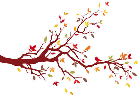 branches silhouette: Autumn tree with colorful leaves, vector