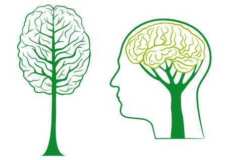 mente humana: Creo que el �rbol de cerebro ecol�gico, verde