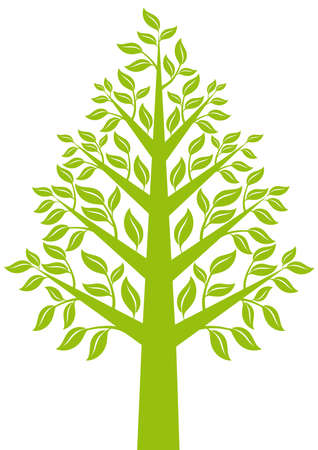 green tree with leaves, design element Vector