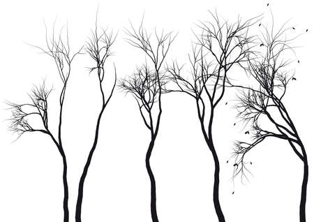 botanical branch: set of detailed tree silhouettes, vector Illustration