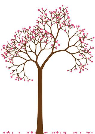 ramo di ciliegio: albero di ciliegio in fiore di primavera, vettoriale Vettoriali