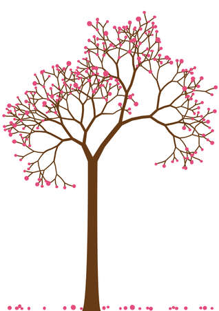 cherry tree: spring tree with cherry blossom, vector