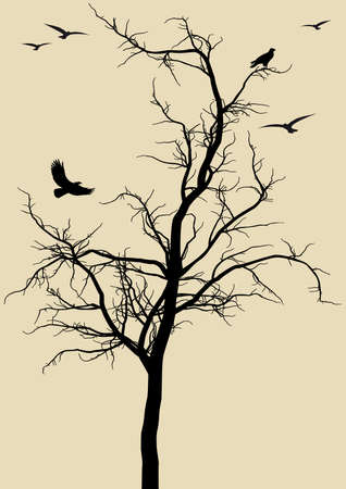 winter garden: black tree silhouette with eagles, background