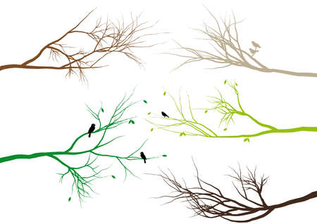 tree branches with birds and leaves Stock Vector - 6668602