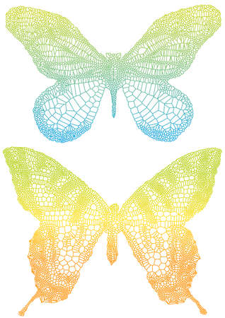 venation: beautiful vector butterflies with delicate texture Illustration
