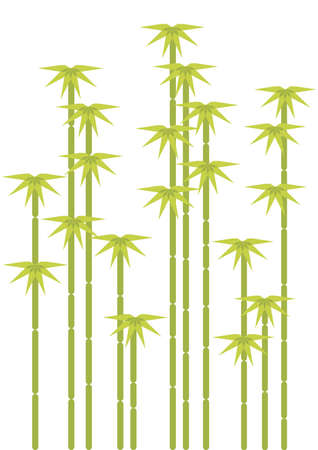 green bamboo tree silhouettes  Vector
