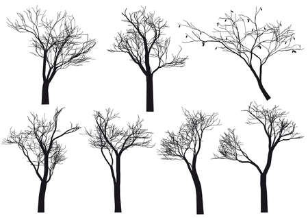 winter garden: set of detailed tree silhouettes