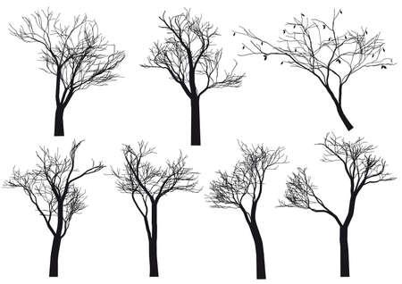 winter garden: set of detailed tree silhouettes