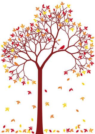 silueta hoja: �rbol de oto�o con coloridas hojas ca�das