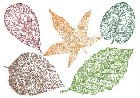 leaf line: set of textured autumn leaves