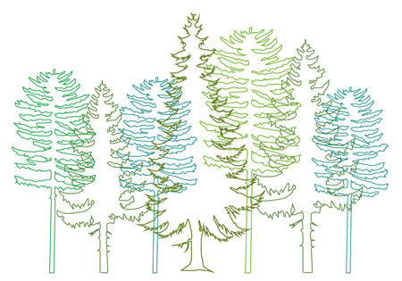 set of green fir trees, background Vector