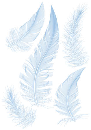 falling down: set of smooth blue feather Illustration
