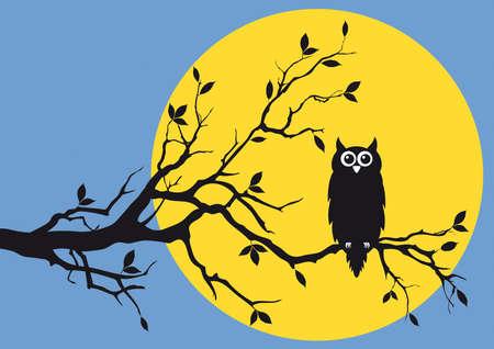 night owl on tree branch Vector