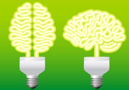 energy efficient light bulb: energy bulb brain, illustration Illustration