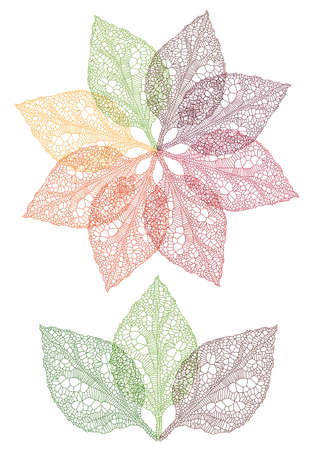 reticular: colorful autumn leaves, vector set Illustration