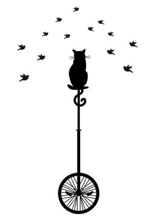 circus bike: gato sentado en monociclo y observaci�n de aves