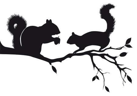 나뭇 가지, 벡터 배경에 다람쥐