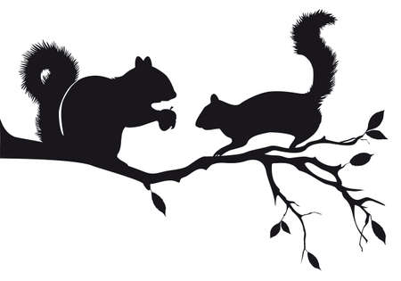 squirrels on tree branch, vector background Ilustrace