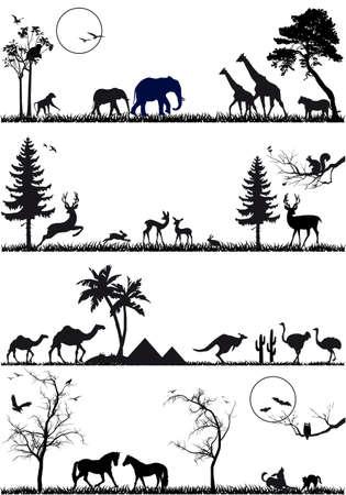 squirrel isolated: wildlife animals, vector background set