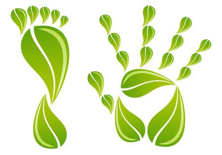 manos y pies: pies y manos con hojas de color verde, fondo de vectores Vectores