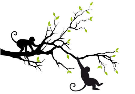 monkey silhouette: monkey hanging on tree branch