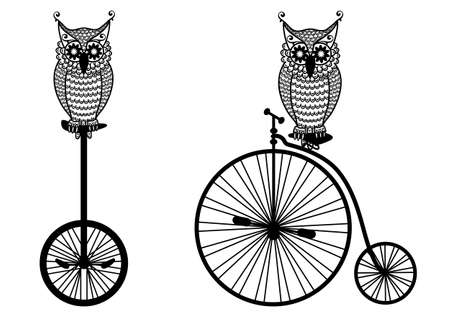 white owl: owls with vintage bicycle