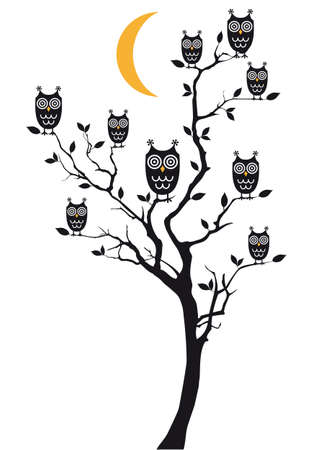 owls sitting on tree branch Vector