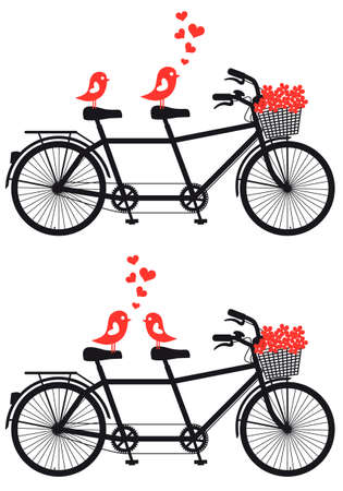 tandem: tandem bicycle with love birds and red hearts, vector