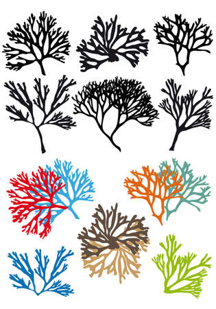 marine coral: corals reefs set, vector design elements