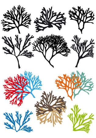corales marinos: Los arrecifes de corales conjunto, elementos de dise�o vectorial