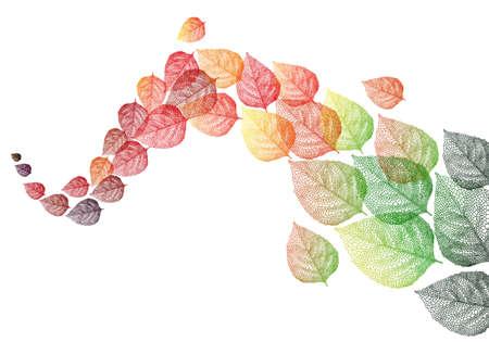 bladeren: kleurrijke herfst bladeren vliegen in de wind, vector achtergrond illustratie