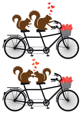 tandem bicycle: squirrel couple in love on tandem bicycle with red hearts, vector illustration Illustration