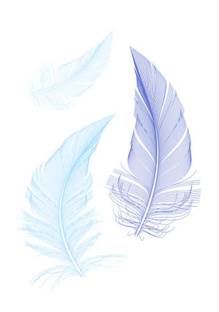 falling feather: blue birds feathers, vector illustration