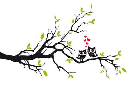 hojas de arbol: Búhos lindos en el amor que se sientan en árbol verde, ilustración vectorial