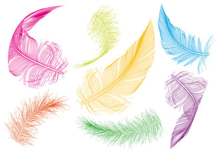 falling feather: colorful flying feathers, vector set