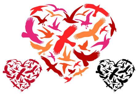 Colorful flying birds in heart shape, vector illustration Vector