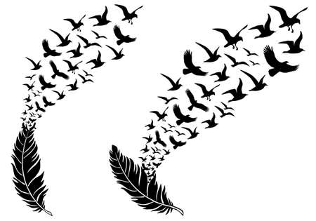 black bird: feathers with free flying birds, vector illustration for a wall tattoo