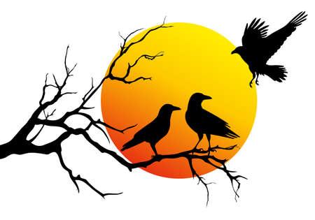 ravens sitting on tree branch, vector illustration