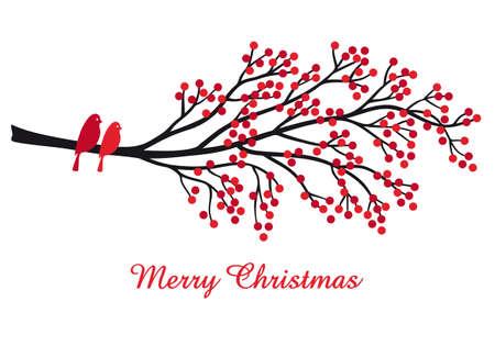 feriado: Tarjeta de Navidad con ramas de árboles de frutos rojos y pájaros, ilustración vectorial