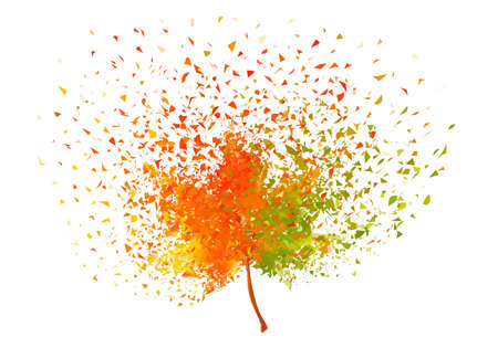 Colorful autumn leaf with flying particles, vector illustration over white background