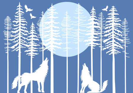 coldness: Howling wolf in fir tree forest with blue moon,  illustration