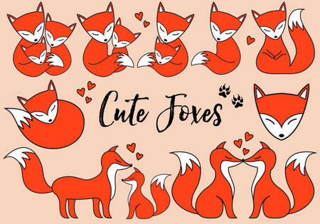 black fox: Cute foxes, little baby fox, hand drawn illustration, vector set