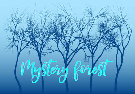 Mystery forest with dark trees and blue night sky, vector background illustration