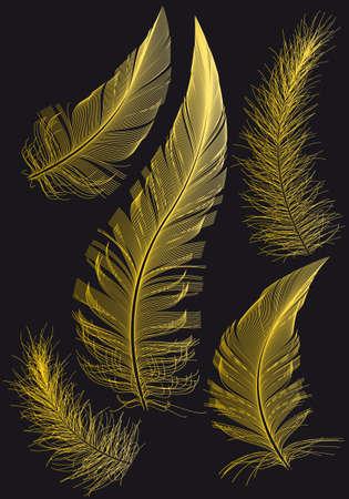 Plumas de oro, sobre fondo negro, ilustración vectorial