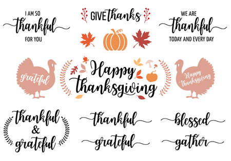 Thanksgiving cards, hand lettering and hand drawn graphic design elements, vector set Illustration